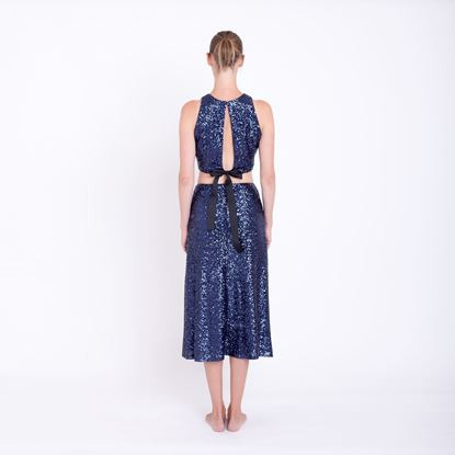 Picture of Blue sequin skirt
