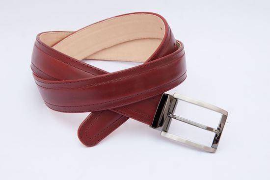 Picture of Reversed belt