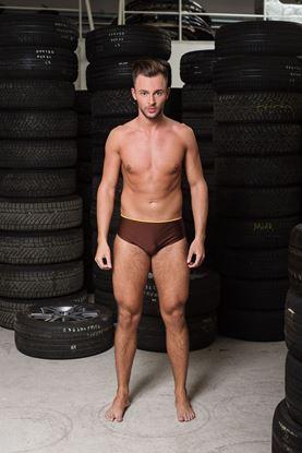 Picture of swim briefs