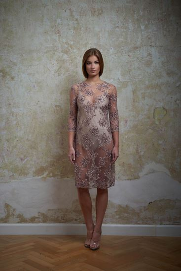 Picture of Dusty rose embroidered dress